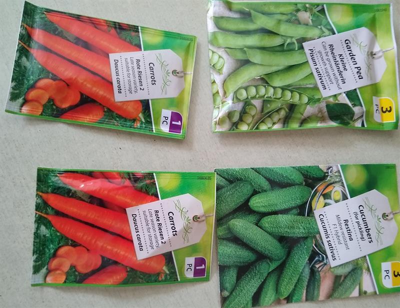 veg seeds.jpg